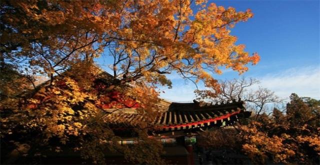 北京香山公园