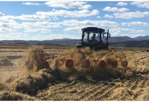除了进城农民土地如何处置,土地延包30年还有哪些重大问题?