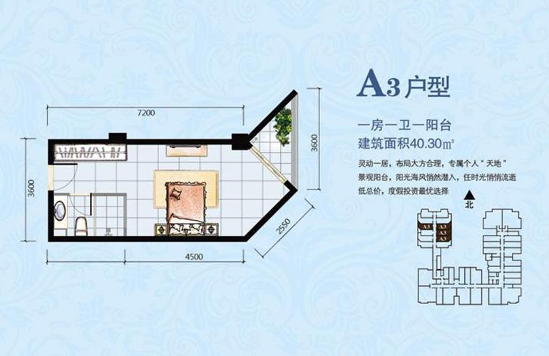 海韵佳园 A3户型 1室0厅1卫0厨 建面40.30㎡