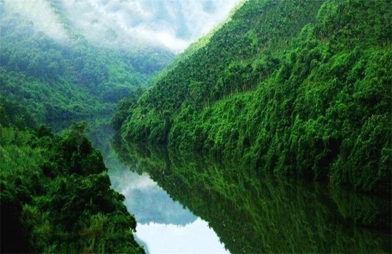 碧桂园东海岸 万泉河