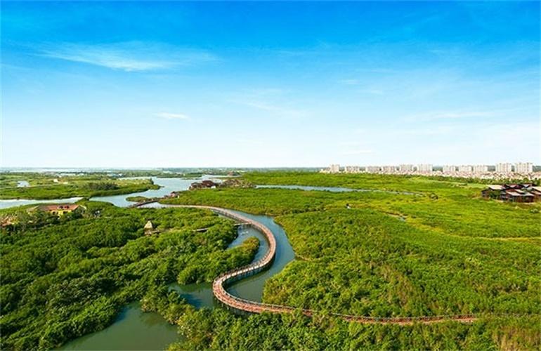 富力红树湾 红树林生态公园