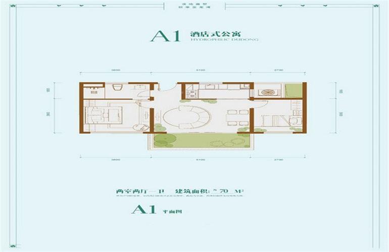 龙溪悦墅 A2 两室两厅两卫