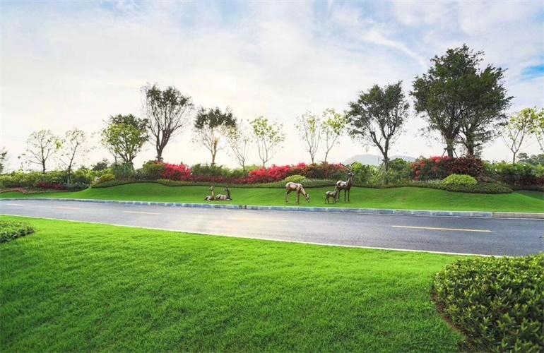 碧桂园海棠盛世 实景图