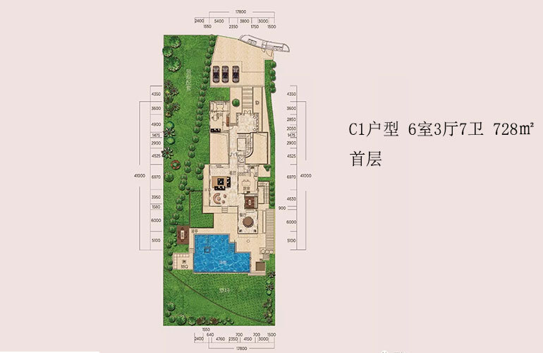 C1户型-6室3厅7卫-首层