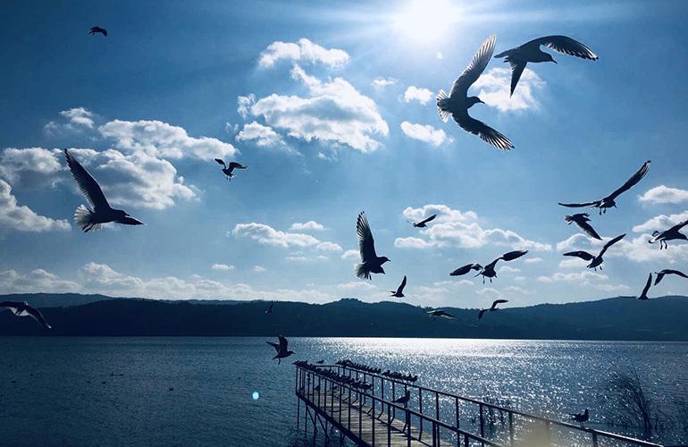 昆明富力湾 周边配套:湖