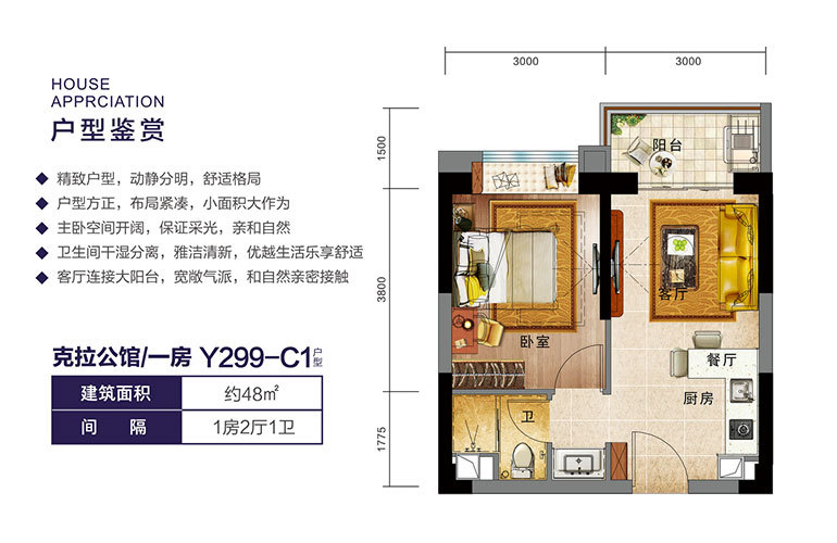 Y299-C1户型 一房两厅一卫 建面48㎡
