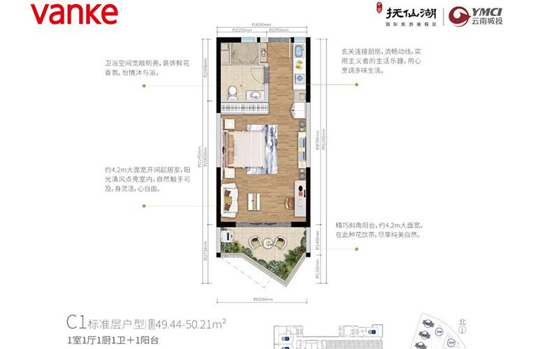 万科抚仙湖 C1标准层户型 1室1厅1卫1厨 49-51㎡