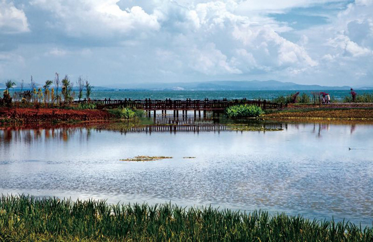 湿地运动主题公园