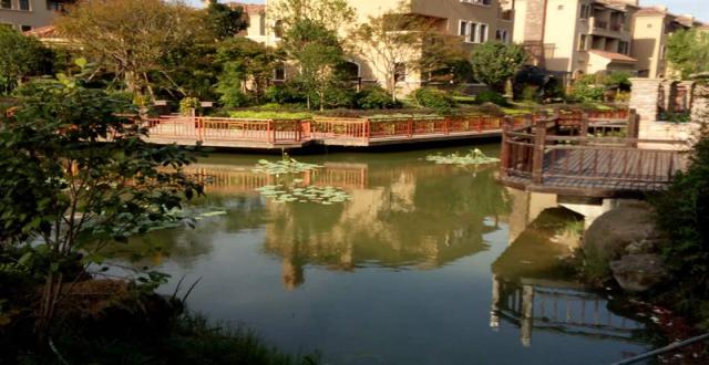 大众湖滨花园在售,优享长江三角发展红利,均价16500元/㎡