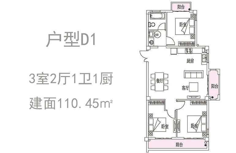 温泉山谷 D1户型 3室2厅1卫1厨 110.45㎡