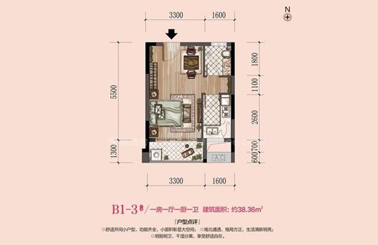 华西芙蓉海 B1-3户型 1室1厅1厨1卫 建面38㎡