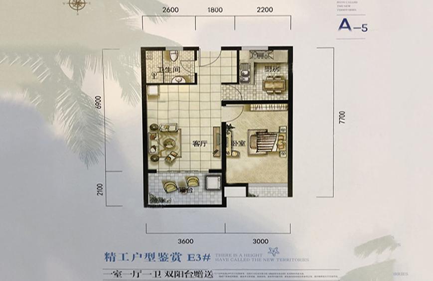 A5户型 1室1厅1厨1卫 建面65㎡
