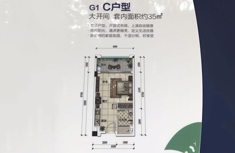 G1-C户型 1室1厨1卫 建面34㎡