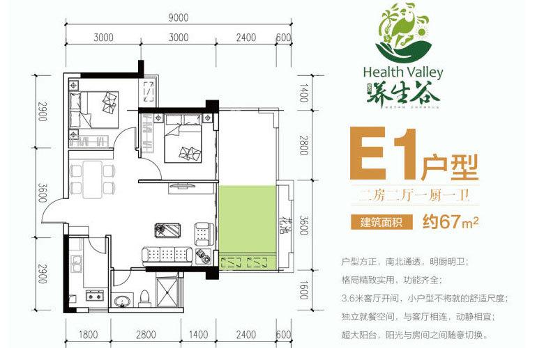 E1户型 2室2厅1卫 建面67㎡