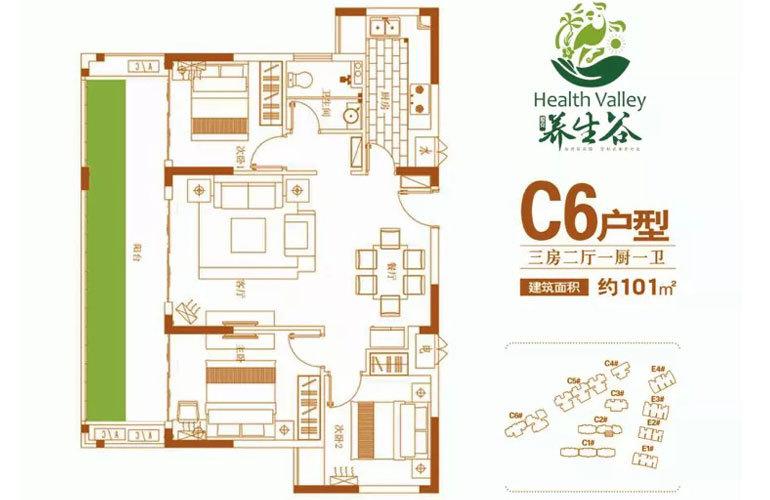 C6户型 3房2厅1卫 建面101㎡