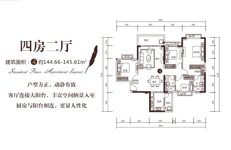 D户型 4室2厅1厨2卫 建面145㎡