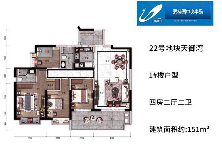 碧桂园中央半岛 1#户型 4房2厅2卫 建面151㎡