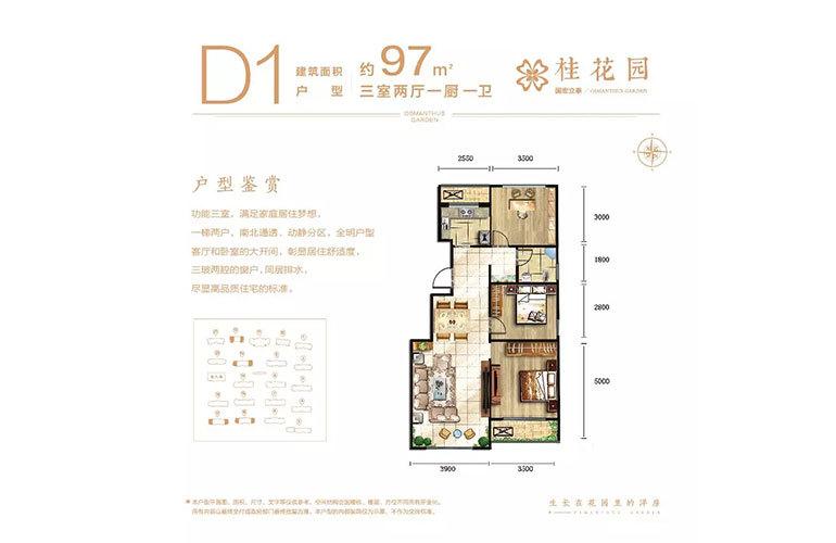 D1户型3室2厅1卫97㎡