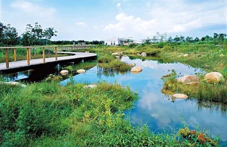 中城华府 西河湿地公园