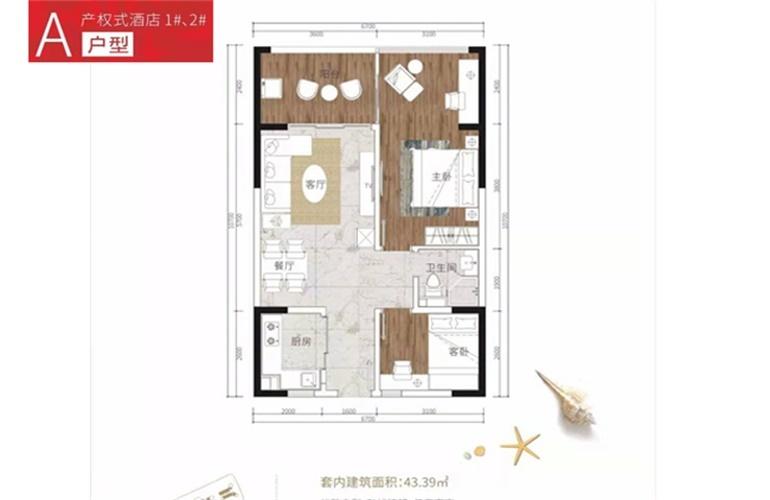 中信国安海岸 A户型 2室2厅1卫1厅 建面43㎡
