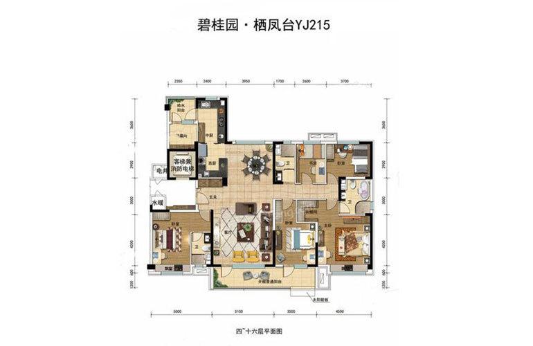 YJ215户型5室2厅3卫215㎡