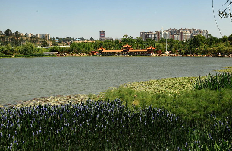 新城蓝光碧桂园古滇水云城 公园