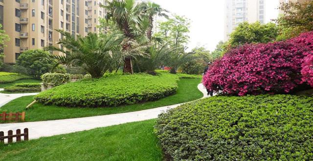 昆明第三城紫香园热售建面85㎡-150㎡小高层,置业经开区均价8000元/㎡