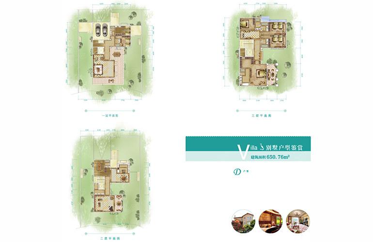 恒大养生谷 独栋D户型 6室2厅7卫1厨 建面650.76㎡