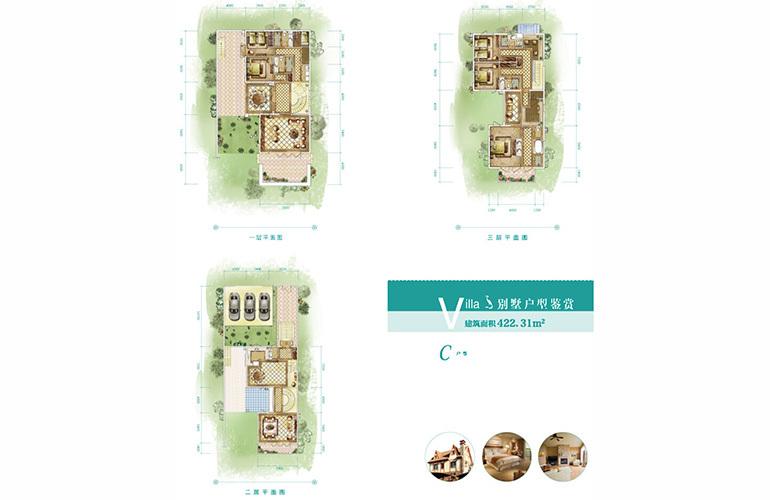 恒大养生谷 独栋C户型 6室2厅5卫1厨 建面422.31㎡