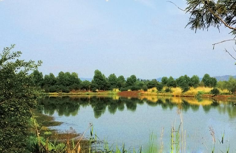恒大养生谷 嘉丽泽八河湿地