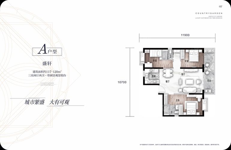 碧桂园北城映象 A户型盛轩 3室2厅2卫 建面117.0㎡