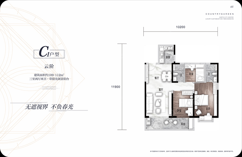 碧桂园北城映象 C1户型云阶 3室2厅2卫 建面109.0㎡