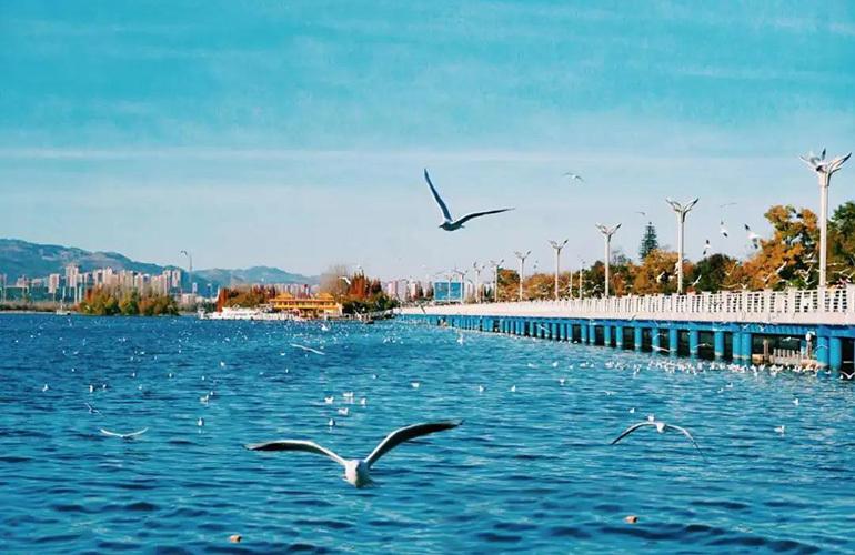 春城365 滇池风光