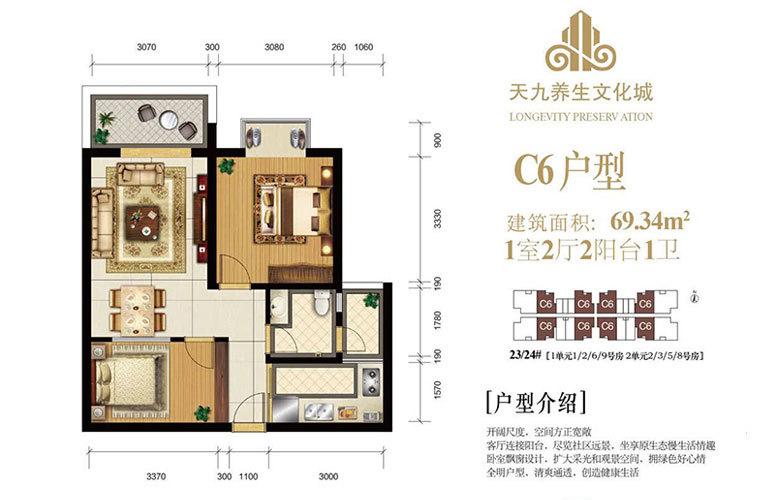 天九养生文化城 C6户型 1房2厅1卫 建面69㎡