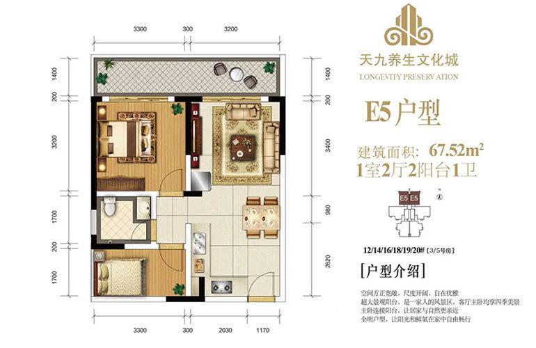 天九养生文化城 E5户型 1房2厅1卫 建面67㎡
