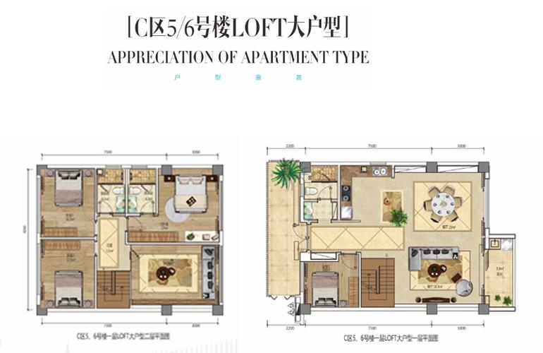 龙栖湾新半岛 C区5/6号楼LOFT大户型