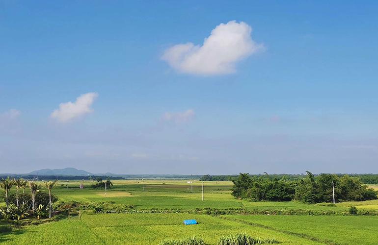 景业白鹭洲