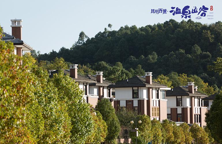 温泉山谷 实景图
