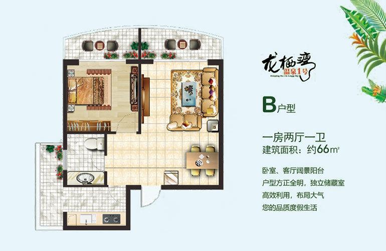 龙栖湾温泉1号 B户型 1房2厅1卫 建筑面积66㎡