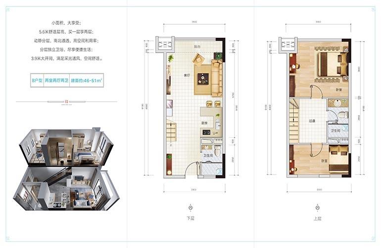 椰林小筑 B户型 2房2卫 建筑面积 46-51㎡