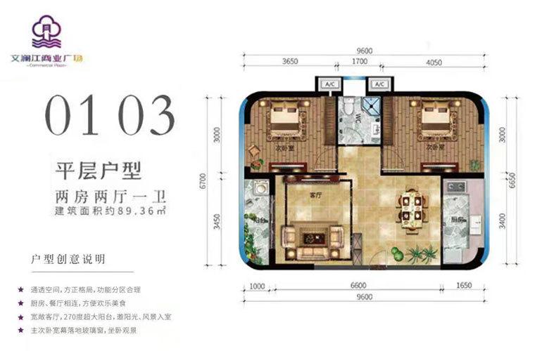文澜江商业广场 01/03平层户型 两房两厅一卫