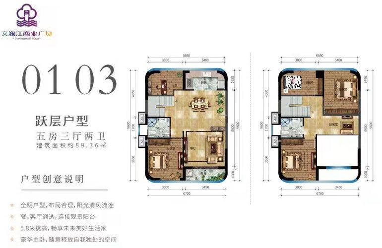 文澜江商业广场 01/03跃层户型 五房三厅两卫