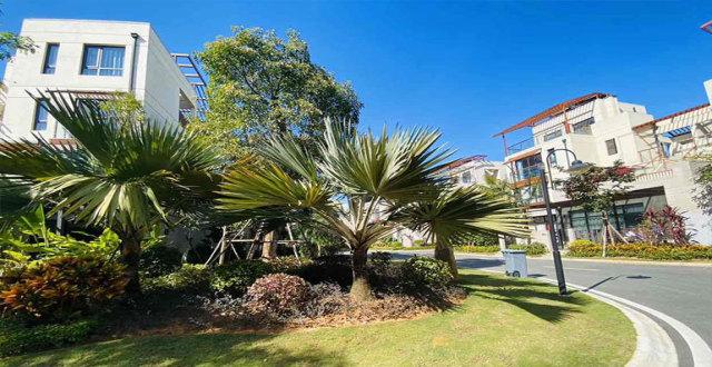 万宁石梅半岛洋房、别墅均有房源在售,洋房总价148万/套