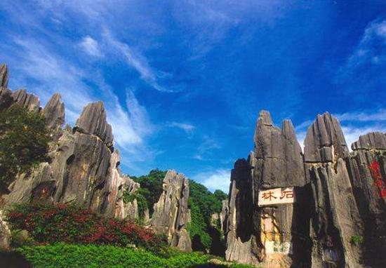 大理、丽江成为全国性旅游度假热区后,昆明石林也逐渐出现在大家眼中!