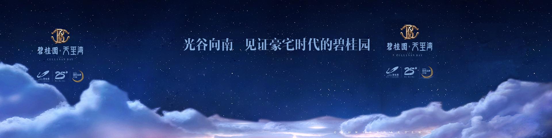 {碧桂园天玺湾