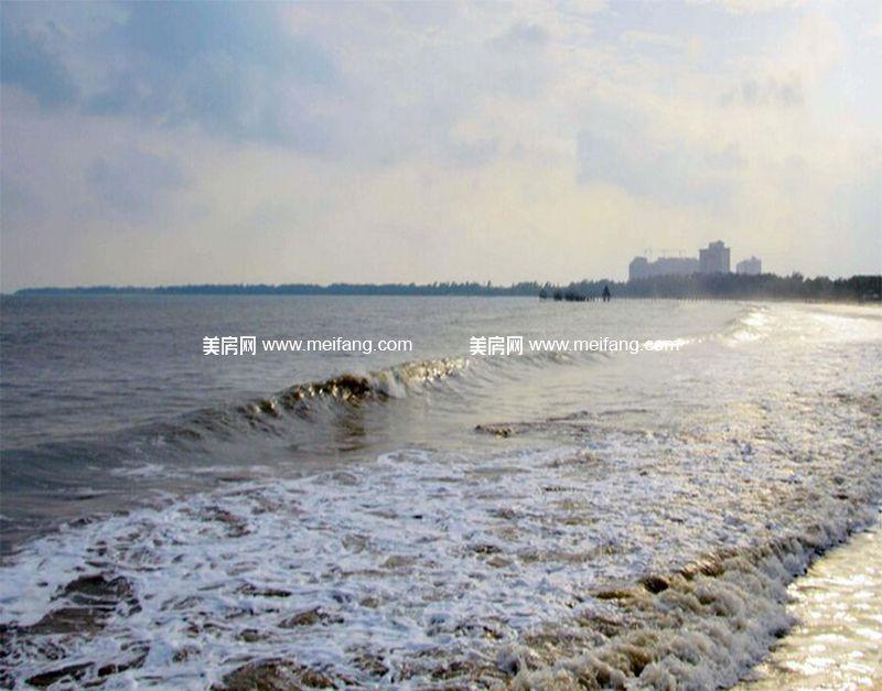 白金海岸 海边沙滩