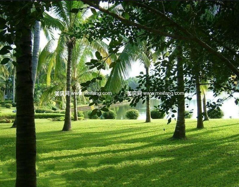木棉山莊 周边配套:兴隆热带植物园