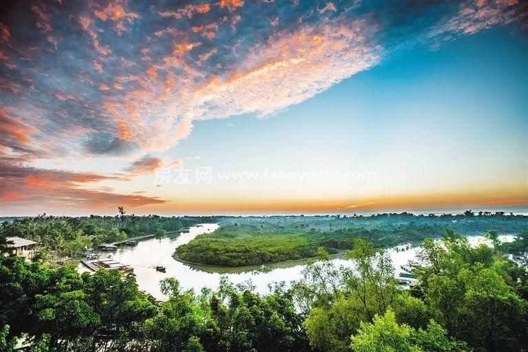 开维生态城 周边配套:东寨港红树林保护区