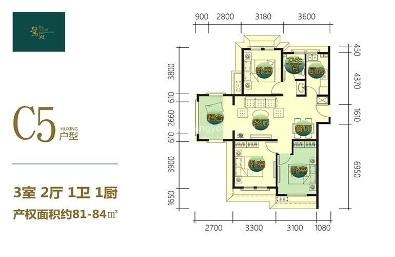 鹭湖国际养生度假区 C5户型 3室2厅1卫1厨 建面84㎡