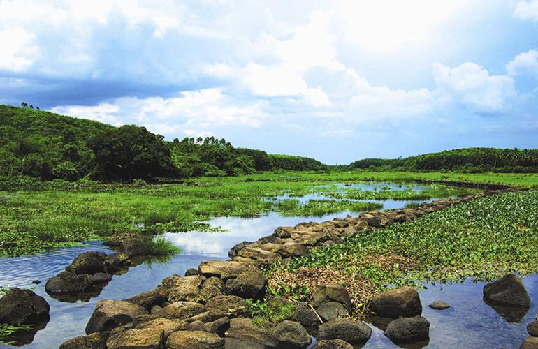 首创森林湖 周边配套:久温塘冷泉